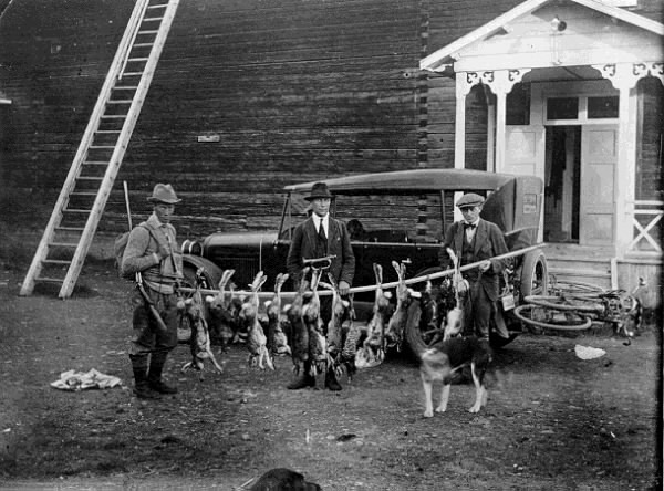 Jaktfångst 1925