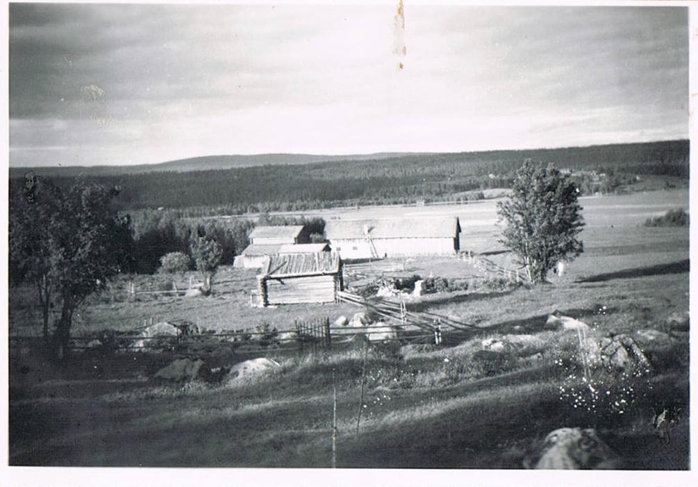 Ulfvik