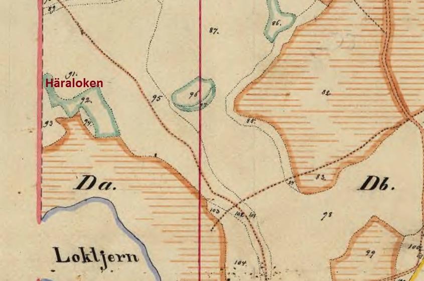 haraloken-1893