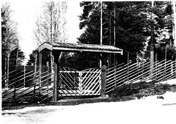 Beredskapsarbete 1991. Ny hage och grind.